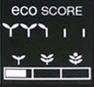 2010 Insight Eco Score