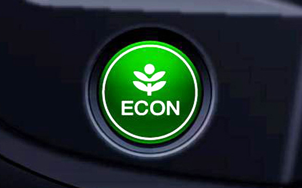 2010 Insight Econ Button